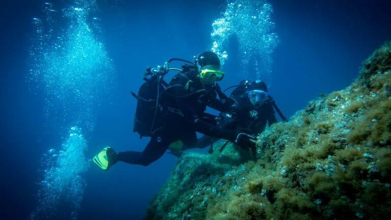 Calypso Marine - sorties